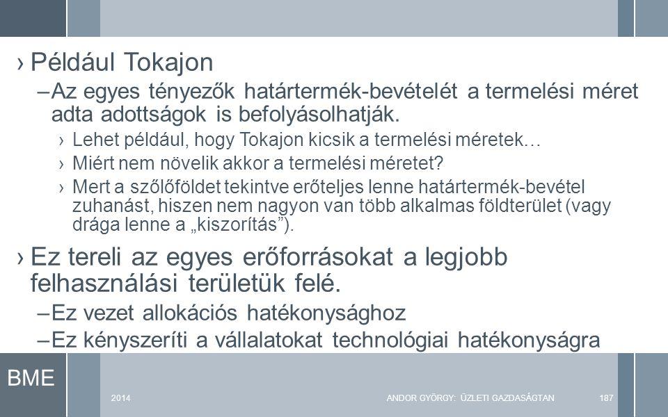 BME 2014ANDOR GYÖRGY: ÜZLETI GAZDASÁGTAN187 ›Például Tokajon –Az egyes tényezők határtermék-bevételét a termelési méret adta adottságok is befolyásolh