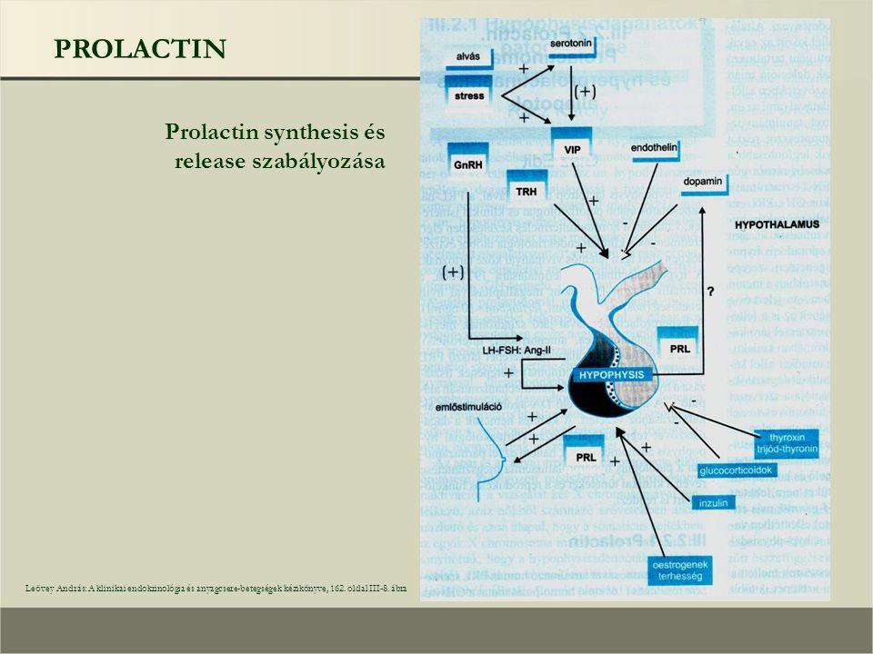 PROLACTIN Prolactin synthesis és release szabályozása Leövey András: A klinikai endokrinológia és anyagcsere-betegségek kézikönyve, 162.