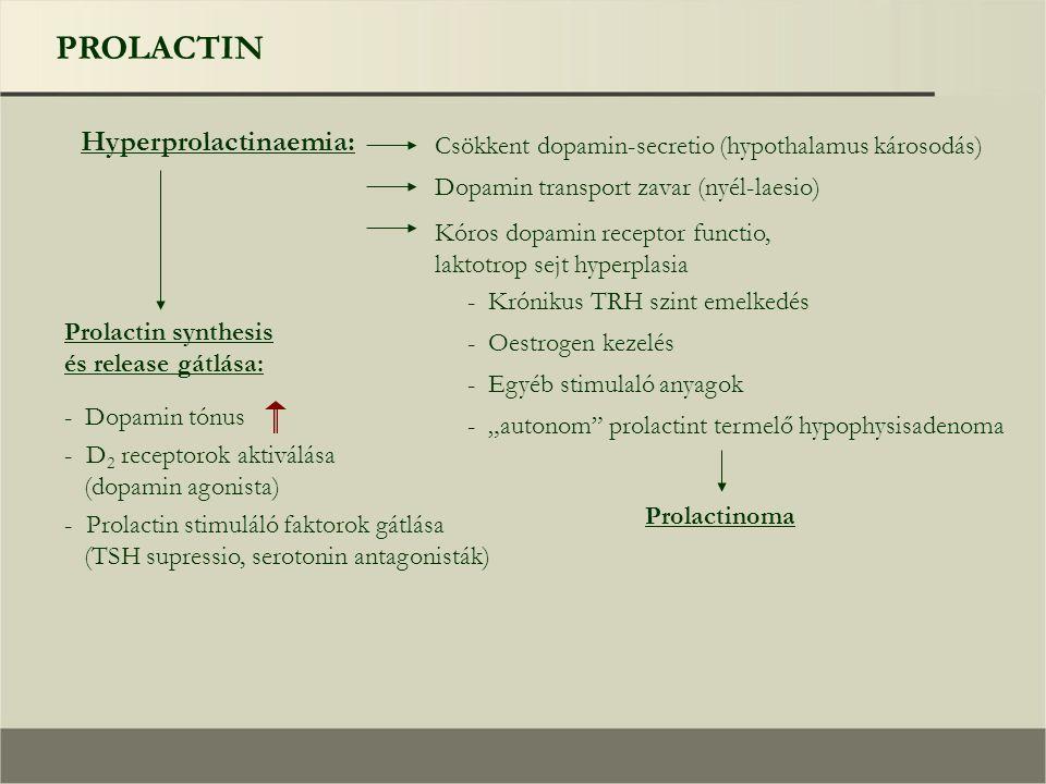 """PROLACTIN Hyperprolactinaemia: Csökkent dopamin-secretio (hypothalamus károsodás) Prolactin synthesis és release gátlása: Dopamin transport zavar (nyél-laesio) Kóros dopamin receptor functio, laktotrop sejt hyperplasia - Krónikus TRH szint emelkedés - Oestrogen kezelés - Egyéb stimulaló anyagok - """"autonom prolactint termelő hypophysisadenoma Prolactinoma - Dopamin tónus - D 2 receptorok aktiválása (dopamin agonista) - Prolactin stimuláló faktorok gátlása (TSH supressio, serotonin antagonisták)"""
