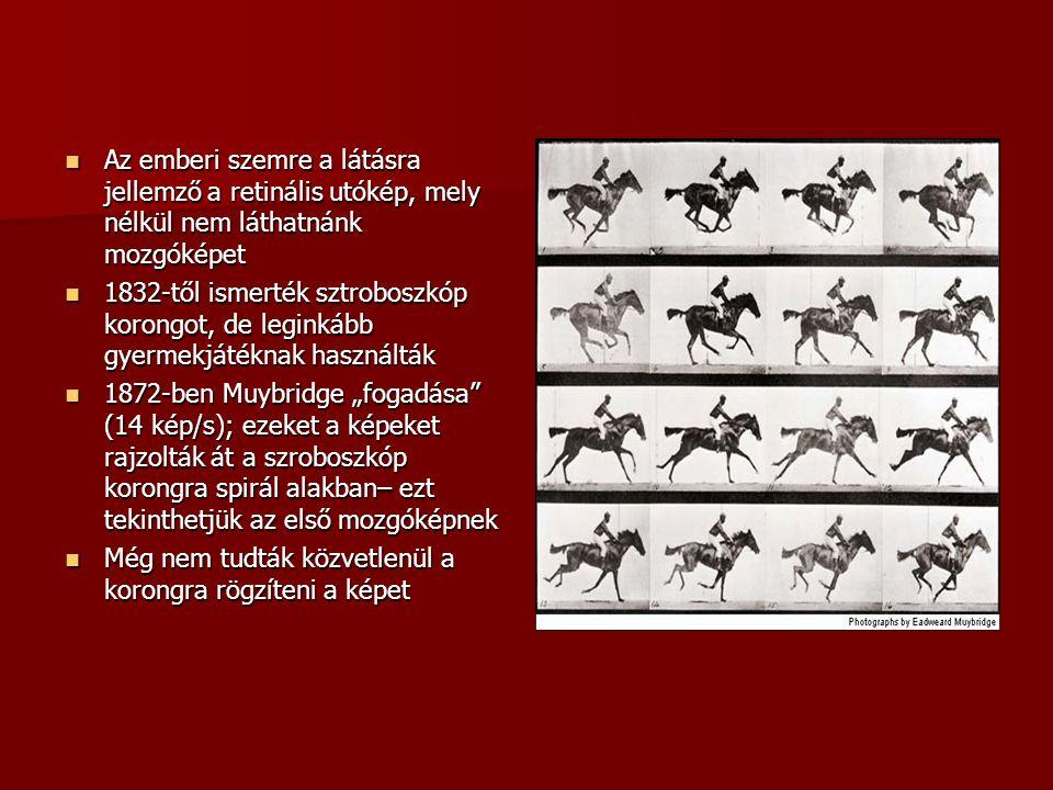 """Az emberi szemre a látásra jellemző a retinális utókép, mely nélkül nem láthatnánk mozgóképet Az emberi szemre a látásra jellemző a retinális utókép, mely nélkül nem láthatnánk mozgóképet 1832-től ismerték sztroboszkóp korongot, de leginkább gyermekjátéknak használták 1832-től ismerték sztroboszkóp korongot, de leginkább gyermekjátéknak használták 1872-ben Muybridge """"fogadása (14 kép/s); ezeket a képeket rajzolták át a szroboszkóp korongra spirál alakban– ezt tekinthetjük az első mozgóképnek 1872-ben Muybridge """"fogadása (14 kép/s); ezeket a képeket rajzolták át a szroboszkóp korongra spirál alakban– ezt tekinthetjük az első mozgóképnek Még nem tudták közvetlenül a korongra rögzíteni a képet Még nem tudták közvetlenül a korongra rögzíteni a képet"""
