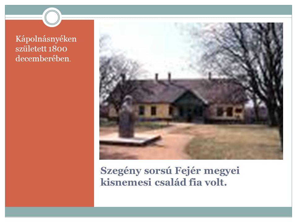 Szegény sorsú Fejér megyei kisnemesi család fia volt. Kápolnásnyéken született 1800 decemberében.