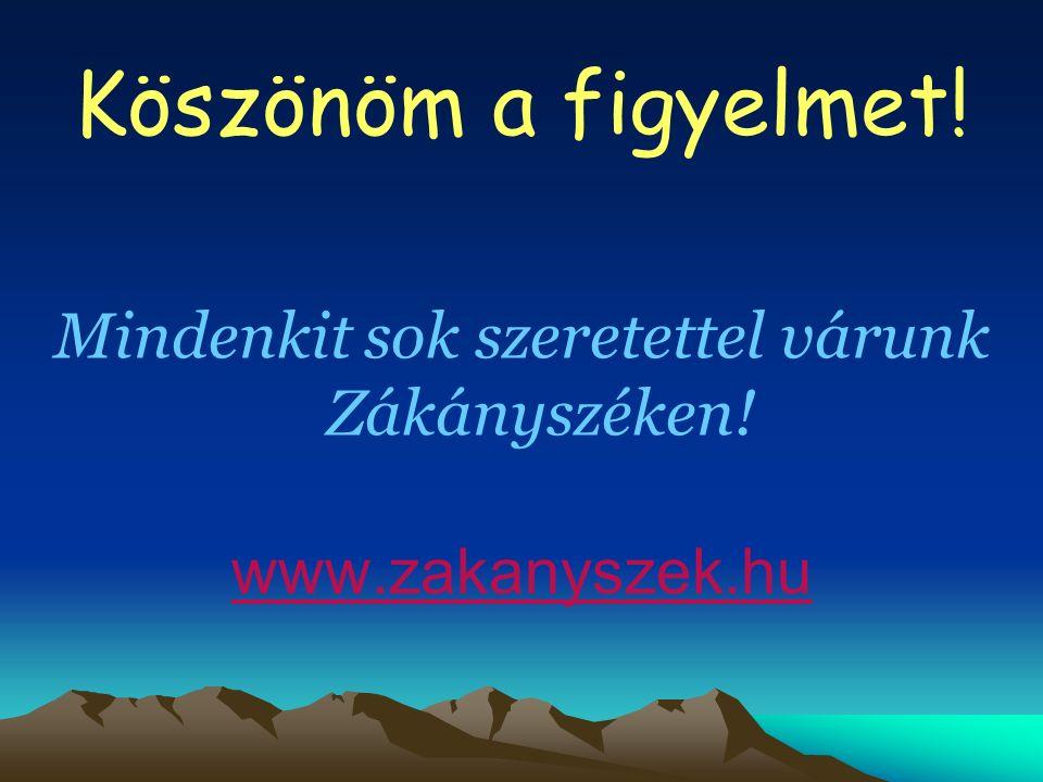 Köszönöm a figyelmet! Mindenkit sok szeretettel várunk Zákányszéken! www.zakanyszek.hu