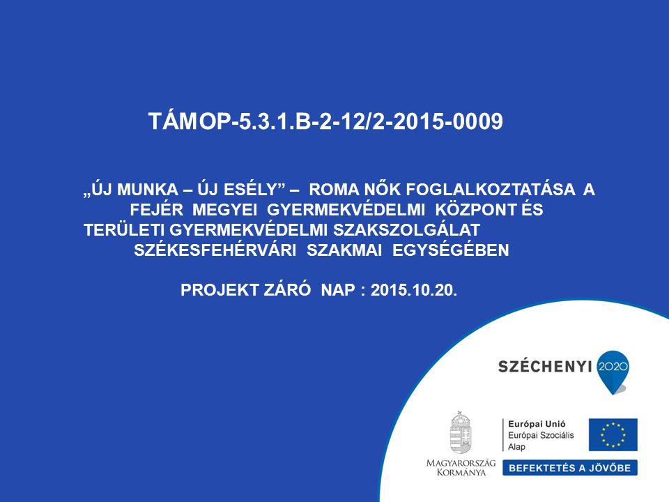 """TÁMOP-5.3.1.B-2-12/2-2015-0009 """"ÚJ MUNKA – ÚJ ESÉLY"""" – ROMA NŐK FOGLALKOZTATÁSA A FEJÉR MEGYEI GYERMEKVÉDELMI KÖZPONT ÉS TERÜLETI GYERMEKVÉDELMI SZAKS"""
