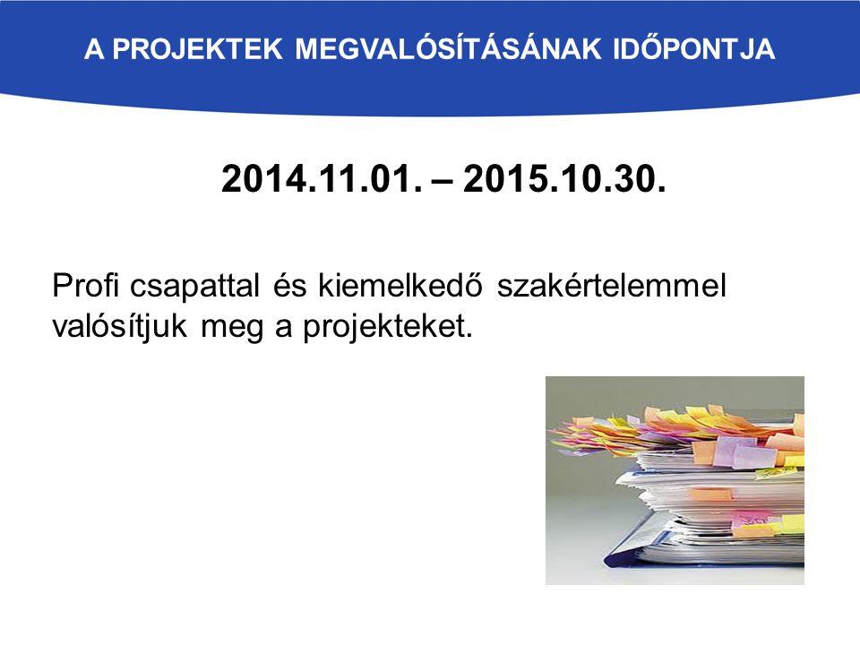 A PROJEKTEK MEGVALÓSÍTÁSÁNAK IDŐPONTJA 2014.11.01. – 2015.10.30. Profi csapattal és kiemelkedő szakértelemmel valósítjuk meg a projekteket.