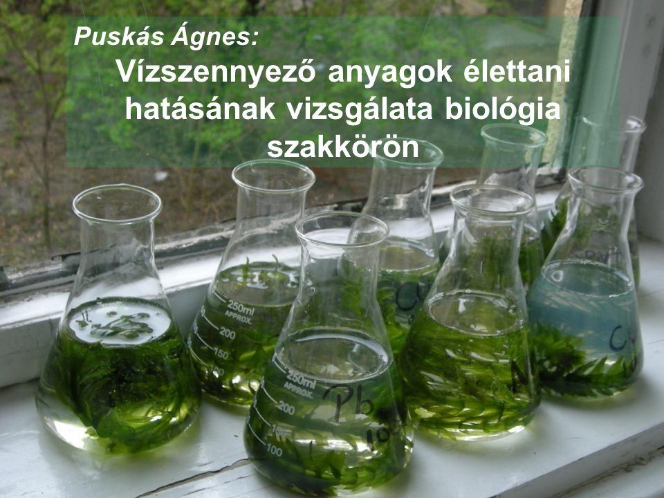 Puskás Ágnes: Vízszennyező anyagok élettani hatásának vizsgálata biológia szakkörön