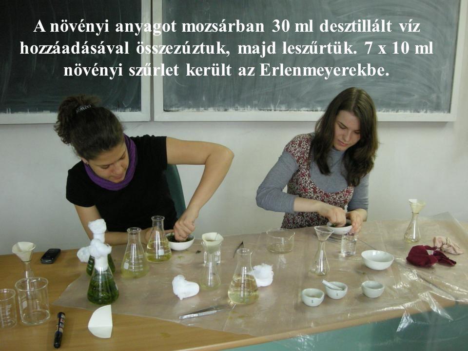 A növényi anyagot mozsárban 30 ml desztillált víz hozzáadásával összezúztuk, majd leszűrtük. 7 x 10 ml növényi szűrlet került az Erlenmeyerekbe.