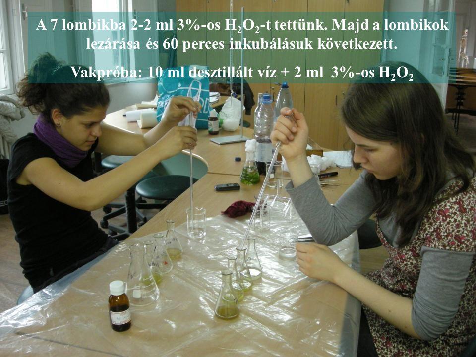 A 7 lombikba 2-2 ml 3%-os H 2 O 2 -t tettünk. Majd a lombikok lezárása és 60 perces inkubálásuk következett. Vakpróba: 10 ml desztillált víz + 2 ml 3%