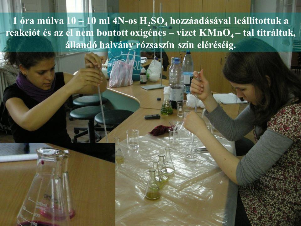 1 óra múlva 10 – 10 ml 4N-os H 2 SO 4 hozzáadásával leállítottuk a reakciót és az el nem bontott oxigénes – vizet KMnO 4 – tal titráltuk, állandó halvány rózsaszín szín eléréséig.