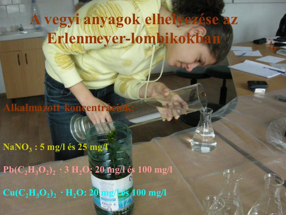 A vegyi anyagok elhelyezése az Erlenmeyer-lombikokban Alkalmazott koncentrációk: NaNO 3 : 5 mg/l és 25 mg/l Pb(C 2 H 3 O 2 ) 2 ∙ 3 H 2 O: 20 mg/l és 100 mg/l Cu(C 2 H 3 O 2 ) 2 ∙ H 2 O: 20 mg/l és 100 mg/l