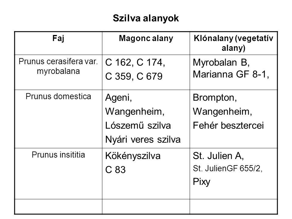 Szilva alanyok növekedés szerinti csoportosítása Igen erős, erős KözéperősFéltörpeTörpe Marianna GF-8-1 St.