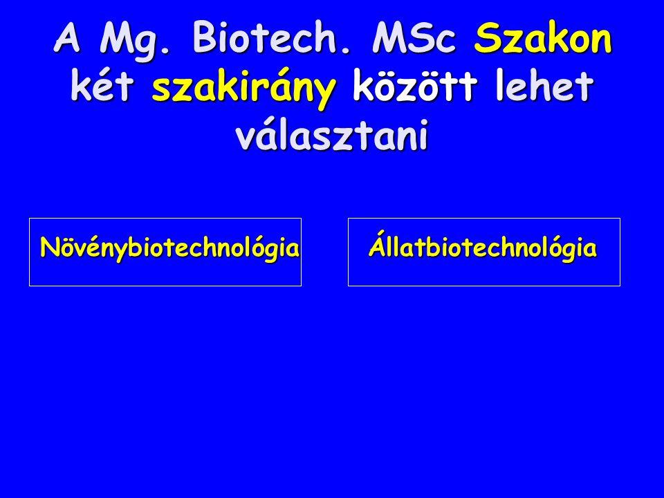 A Mg. Biotech. MSc Szakon két szakirány között lehet választani Növénybiotechnológia Állatbiotechnológia