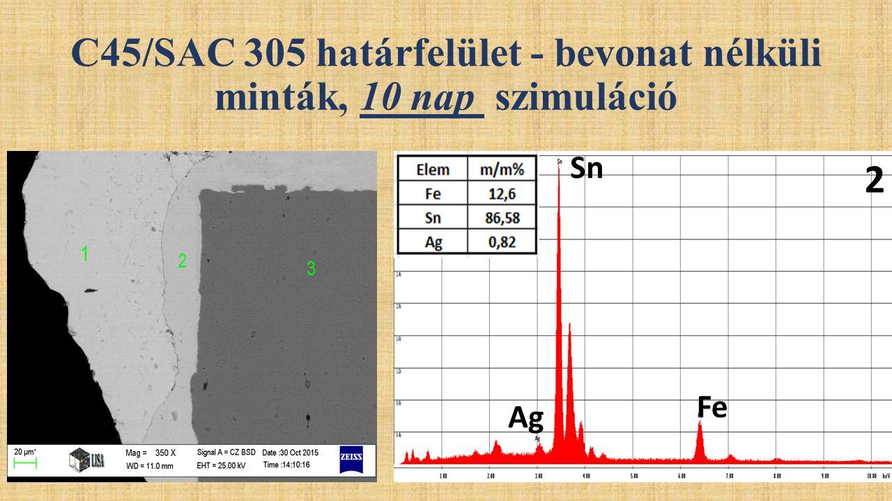 2 Sn Fe Ag C45/SAC 305 határfelület - bevonat nélküli minták, 10 nap szimuláció