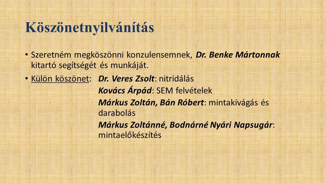 Köszönetnyilvánítás Szeretném megköszönni konzulensemnek, Dr. Benke Mártonnak kitartó segítségét és munkáját. Külön köszönet: Dr. Veres Zsolt: nitridá