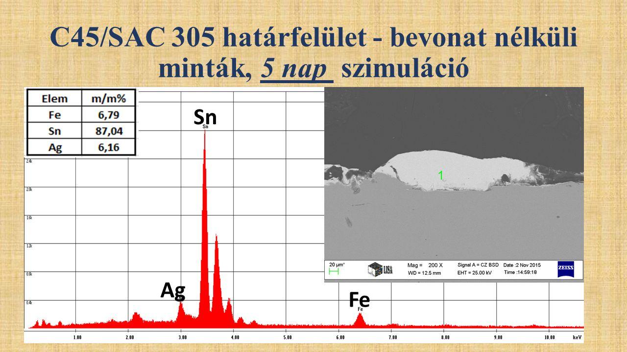 C45/SAC 305 határfelület - bevonat nélküli minták, 5 nap szimuláció Sn Ag Fe