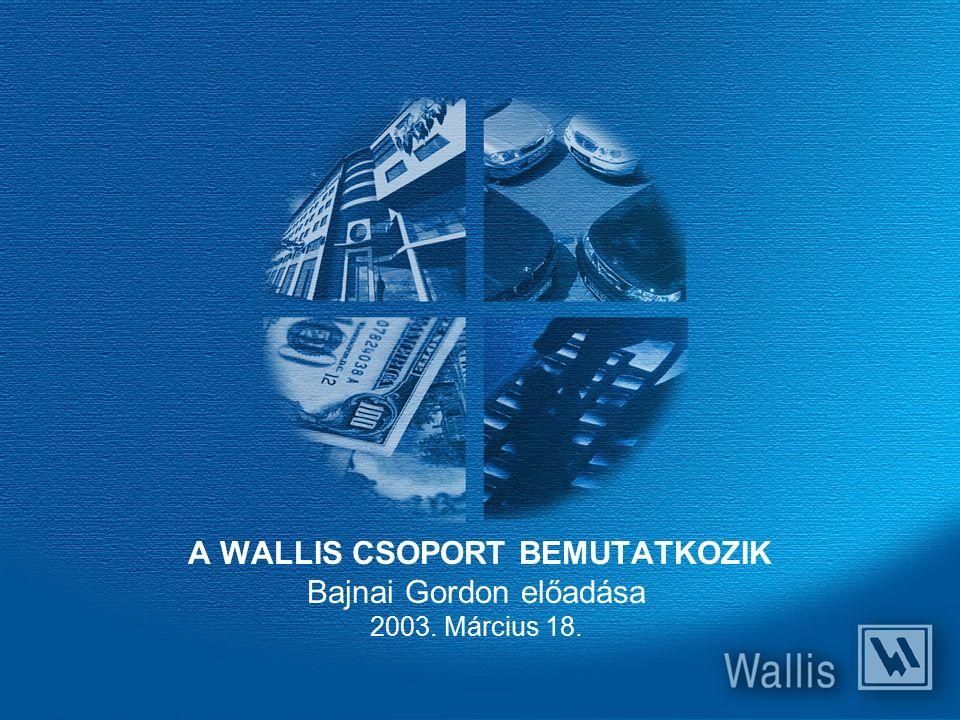 A WALLIS CSOPORT BEMUTATKOZIK Bajnai Gordon előadása 2003. Március 18.