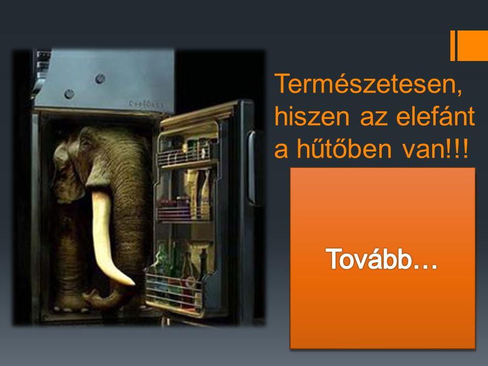 Természetesen, hiszen az elefánt a hűtőben van!!!