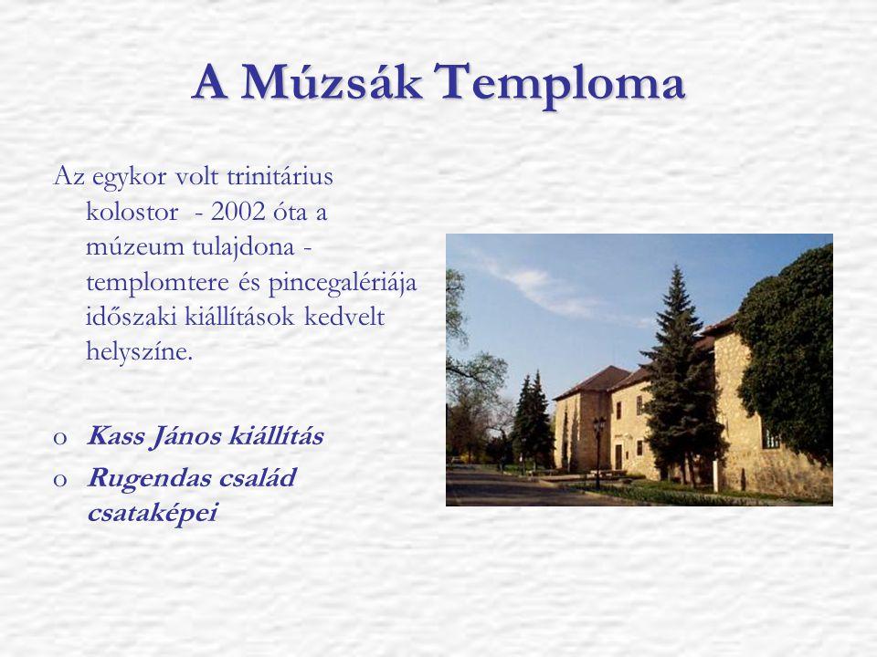 A Múzsák Temploma Az egykor volt trinitárius kolostor - 2002 óta a múzeum tulajdona - templomtere és pincegalériája időszaki kiállítások kedvelt helys