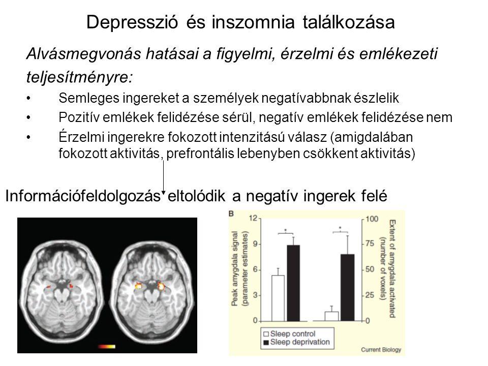 Depresszió és inszomnia találkozása Alvásmegvonás hatásai a figyelmi, érzelmi és emlékezeti teljesítményre: Semleges ingereket a személyek negatívabbnak észlelik Pozitív emlékek felidézése sérül, negatív emlékek felidézése nem Érzelmi ingerekre fokozott intenzitású válasz (amigdalában fokozott aktivitás, prefrontális lebenyben csökkent aktivitás) Információfeldolgozás eltolódik a negatív ingerek felé