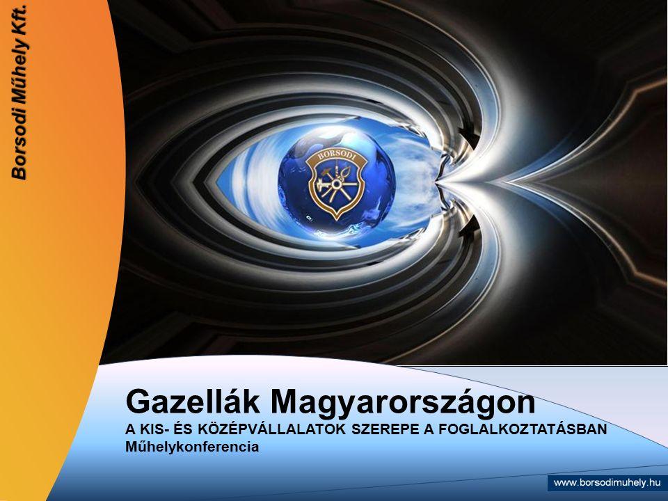 Gazellák Magyarországon A KIS- ÉS KÖZÉPVÁLLALATOK SZEREPE A FOGLALKOZTATÁSBAN Műhelykonferencia