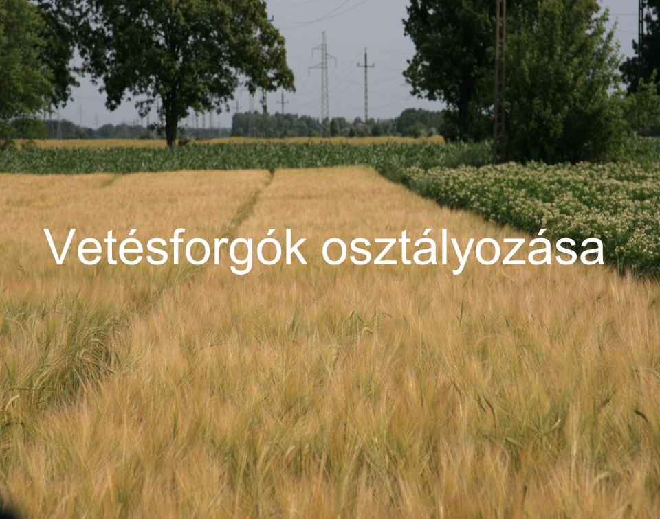 Vetésforgó Vetésforgók osztályozása  I.növénytermesztés célja szerint 1.
