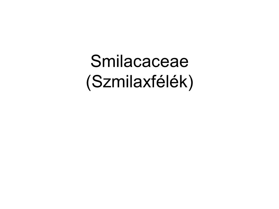 Smilacaceae (Szmilaxfélék)