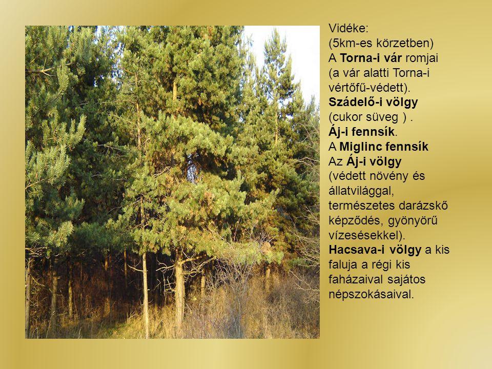 Vidéke: (5km-es körzetben) A Torna-i vár romjai (a vár alatti Torna-i vértőfű-védett). Szádelő-i völgy (cukor süveg ). Áj-i fennsík. A Miglinc fennsík