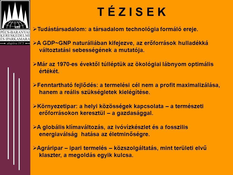 T É Z I S E K  Tudástársadalom: a társadalom technológia formáló ereje.  A GDP~GNP naturáliában kifejezve, az erőforrások hulladékká változtatási se