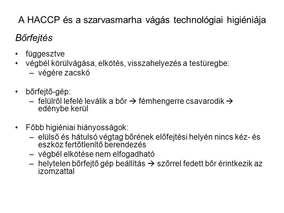 A HACCP és a szarvasmarha vágás technológiai higiéniája Bőrfejtés függesztve végbél körülvágása, elkötés, visszahelyezés a testüregbe: –végére zacskó bőrfejtő-gép: –felülről lefelé leválik a bőr  fémhengerre csavarodik  edénybe kerül Főbb higiéniai hiányosságok: –elülső és hátulsó végtag bőrének előfejtési helyén nincs kéz- és eszköz fertőtlenítő berendezés –végbél elkötése nem elfogadható –helytelen bőrfejtő gép beállítás  szőrrel fedett bőr érintkezik az izomzattal