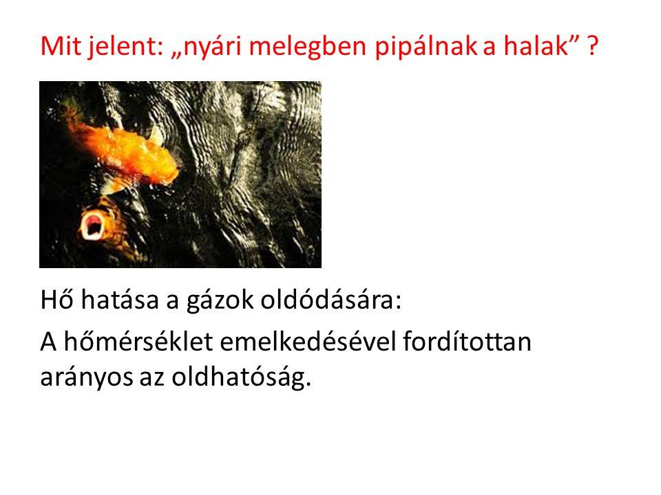 """Mit jelent: """"nyári melegben pipálnak a halak"""" ? Hő hatása a gázok oldódására: A hőmérséklet emelkedésével fordítottan arányos az oldhatóság."""