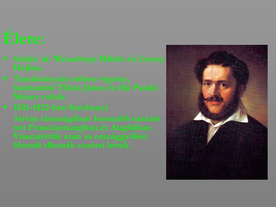 Élete:  Szülei: id. Wesselényi Miklós és Cserey Heléna  Tanulmányait otthon végezte, házitanítói Tőkés János és ifjú Pataki Mózes voltak.  1821-182