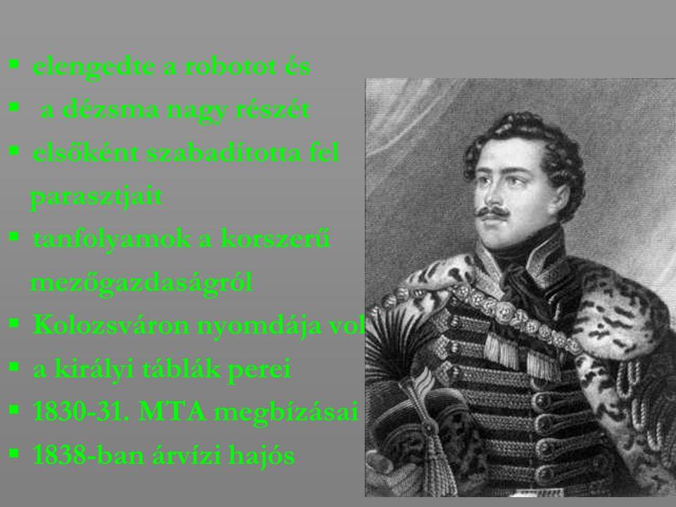  A perben 3 év börtönre ítélték. 1843-1848-ig Zsibón élt, mint Kolozs vármegye alispánja.