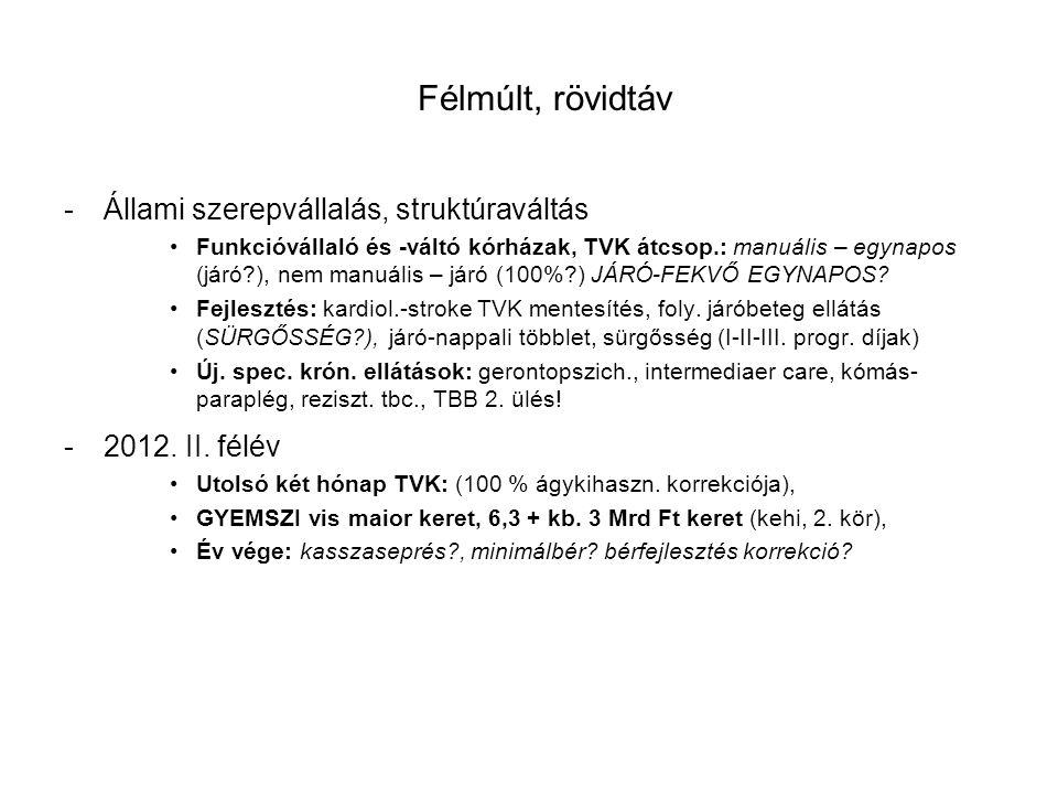 -2013.évi finanszírozás tervezése 51,6 Mrd Ft többletforrás (törv.