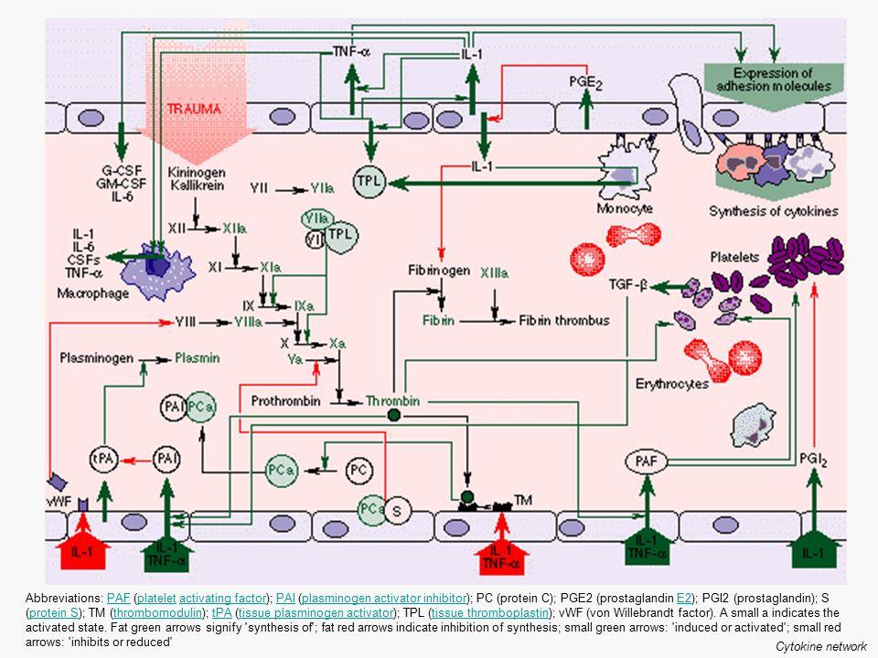 Abbreviations: PAF (platelet activating factor); PAI (plasminogen activator inhibitor); PC (protein C); PGE2 (prostaglandin E2); PGI2 (prostaglandin);