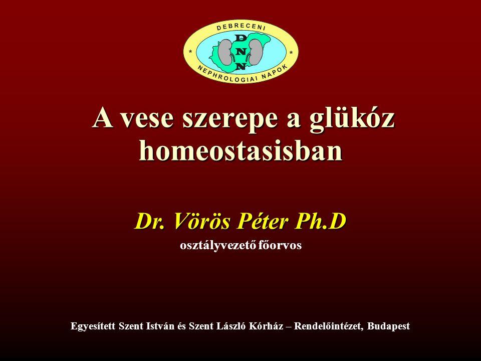 A vese szerepe a glükóz A vese szerepe a glükózhomeostasisban Dr.