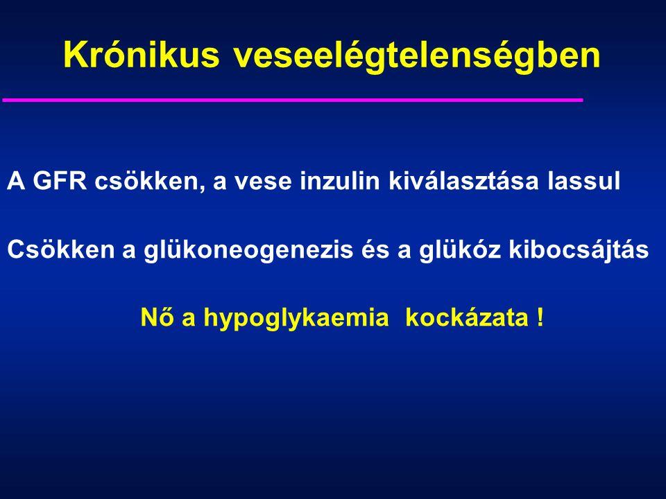 Krónikus veseelégtelenségben A GFR csökken, a vese inzulin kiválasztása lassul Csökken a glükoneogenezis és a glükóz kibocsájtás Nő a hypoglykaemia kockázata !