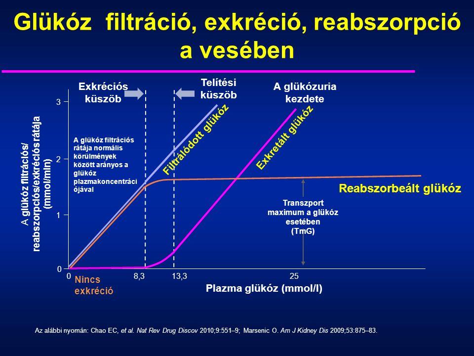 Glükóz filtráció, exkréció, reabszorpció a vesében Az alábbi nyomán: Chao EC, et al.