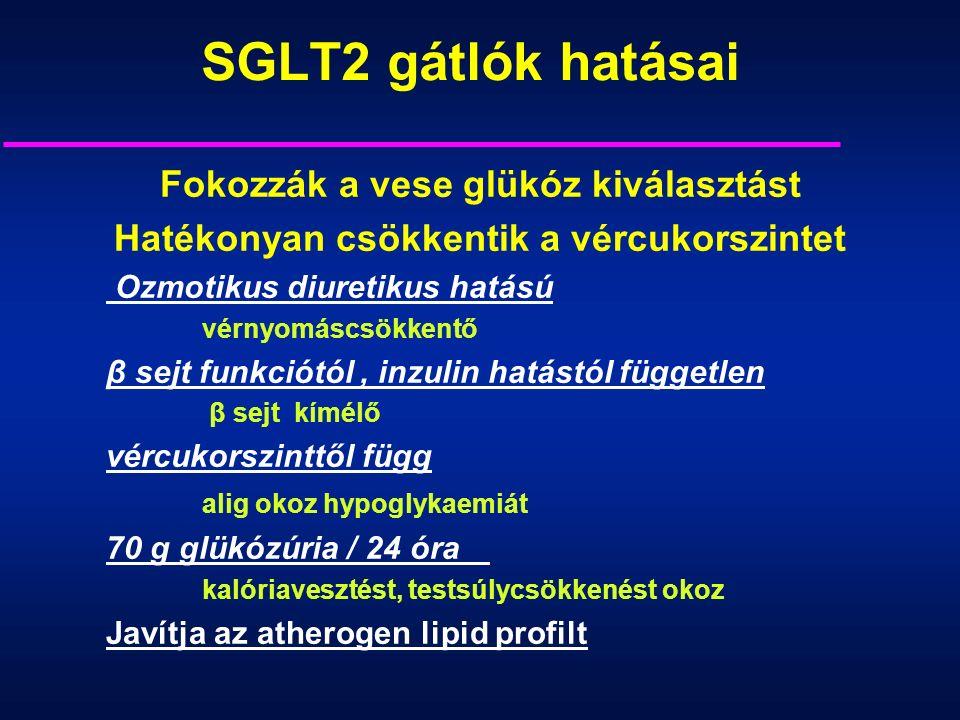SGLT2 gátlók hatásai Fokozzák a vese glükóz kiválasztást Hatékonyan csökkentik a vércukorszintet Ozmotikus diuretikus hatású vérnyomáscsökkentő β sejt funkciótól, inzulin hatástól független β sejt kímélő vércukorszinttől függ alig okoz hypoglykaemiát 70 g glükózúria / 24 óra kalóriavesztést, testsúlycsökkenést okoz Javítja az atherogen lipid profilt