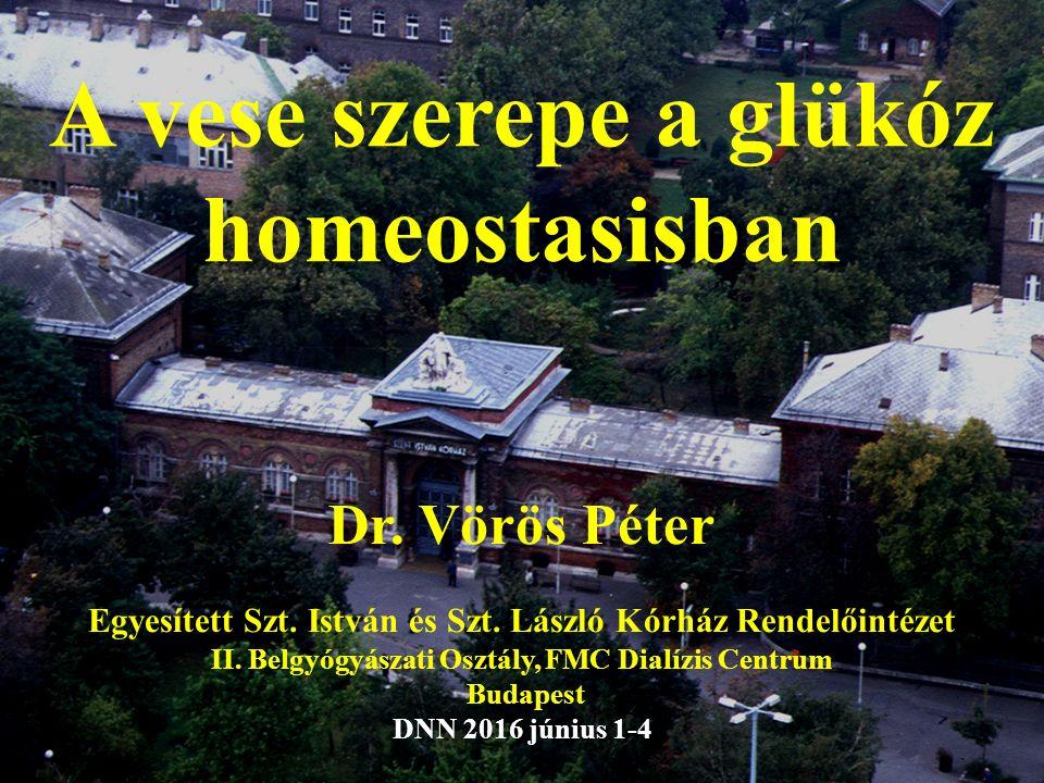 A vese szerepe a glükóz homeostasisban Dr. Vörös Péter Egyesített Szt.