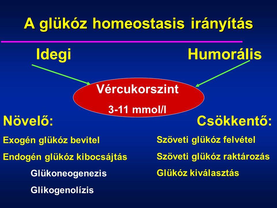 A glükóz homeostasis irányítás Vércukorszint 3-11 mmol/l Növelő:Csökkentő: Exogén glükóz bevitel Endogén glükóz kibocsájtás Glükoneogenezis Glikogenolízis IdegiHumorális Szöveti glükóz felvétel Szöveti glükóz raktározás Glükóz kiválasztás