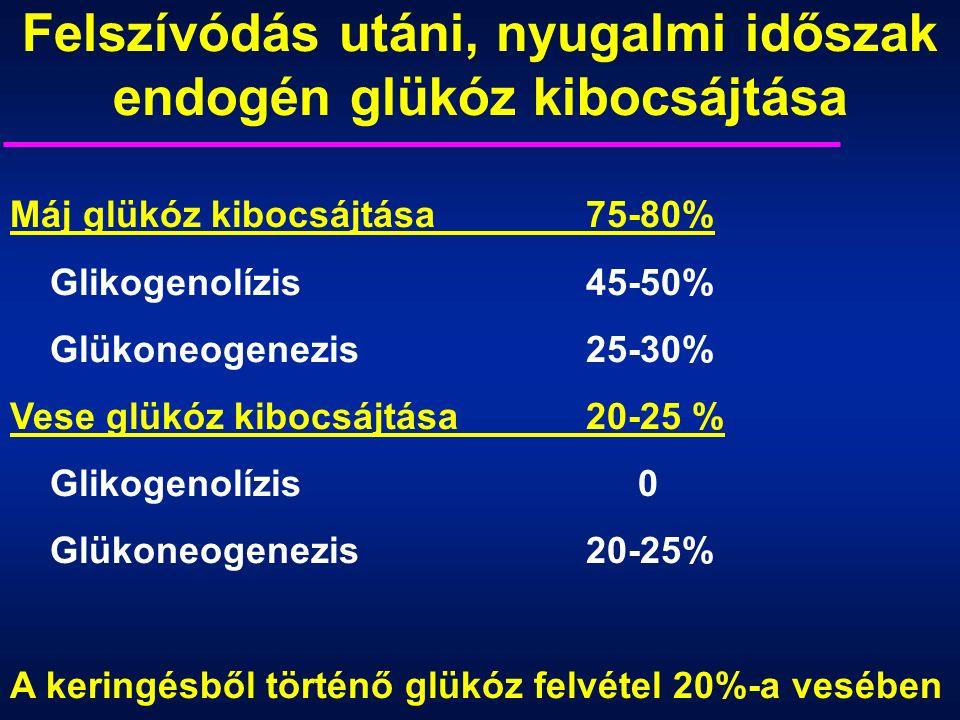 Máj glükóz kibocsájtása75-80% Glikogenolízis45-50% Glükoneogenezis25-30% Vese glükóz kibocsájtása20-25 % Glikogenolízis 0 Glükoneogenezis20-25% A keringésből történő glükóz felvétel 20%-a vesében Felszívódás utáni, nyugalmi időszak endogén glükóz kibocsájtása