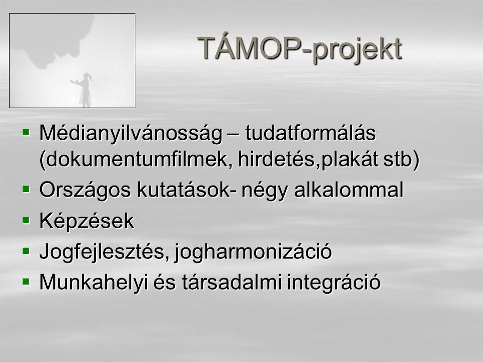 TÁMOP-projekt  Médianyilvánosság – tudatformálás (dokumentumfilmek, hirdetés,plakát stb)  Országos kutatások- négy alkalommal  Képzések  Jogfejlesztés, jogharmonizáció  Munkahelyi és társadalmi integráció