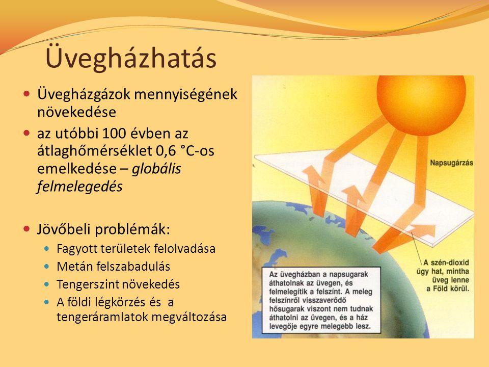Üvegházhatás Üvegházgázok mennyiségének növekedése az utóbbi 100 évben az átlaghőmérséklet 0,6 °C-os emelkedése – globális felmelegedés Jövőbeli problémák: Fagyott területek felolvadása Metán felszabadulás Tengerszint növekedés A földi légkörzés és a tengeráramlatok megváltozása