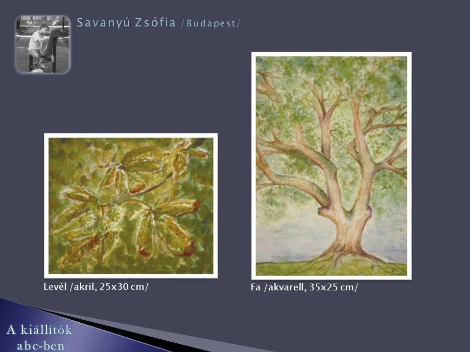 Fák /akvarell, 25x35 cm/ Pipacsok /akril, 30x25 cm/ Portré /akril, 30x25 cm/