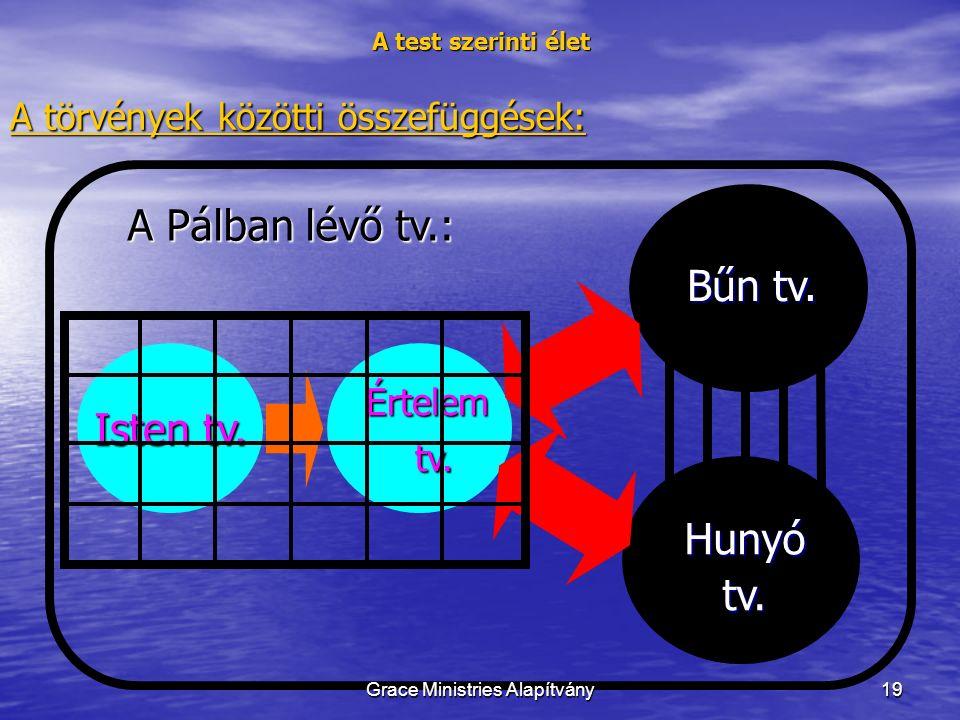 19 A test szerinti élet A törvények közötti összefüggések: Isten tv.