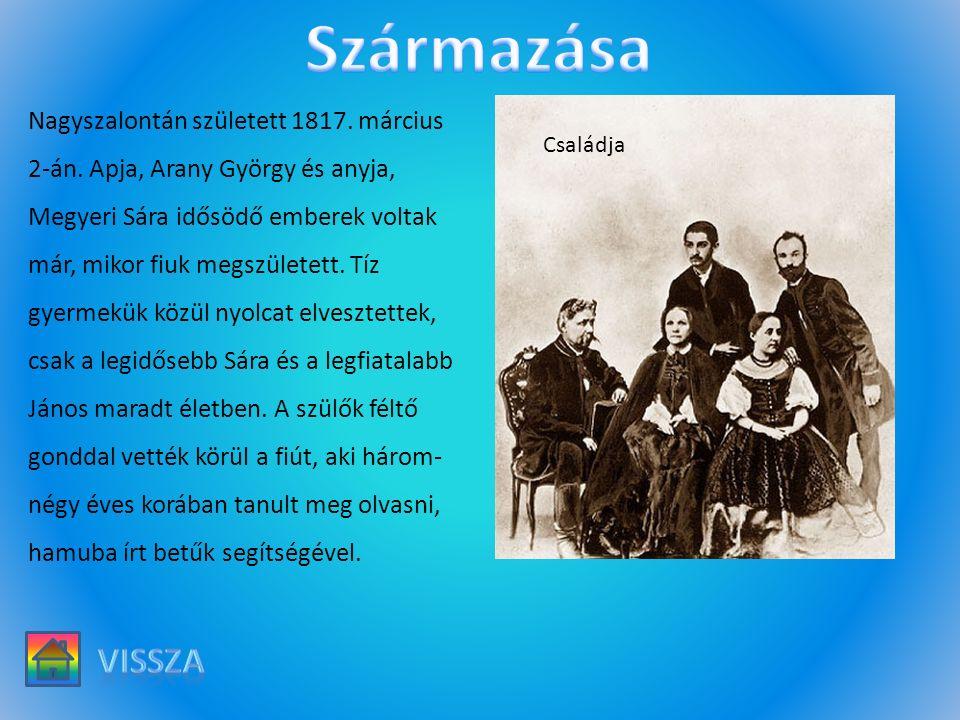 Nagyszalontán született 1817. március 2-án. Apja, Arany György és anyja, Megyeri Sára idősödő emberek voltak már, mikor fiuk megszületett. Tíz gyermek