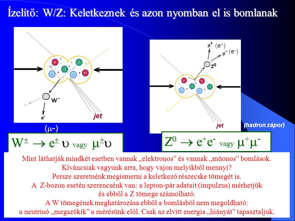 Dr. Krasznahorkay Attila Magfizika12 Detektorok Félig kitöltené a Notre Dame katedrálist Több vas van benne mint az Eiffel toronyban 50 μm pontosság 1