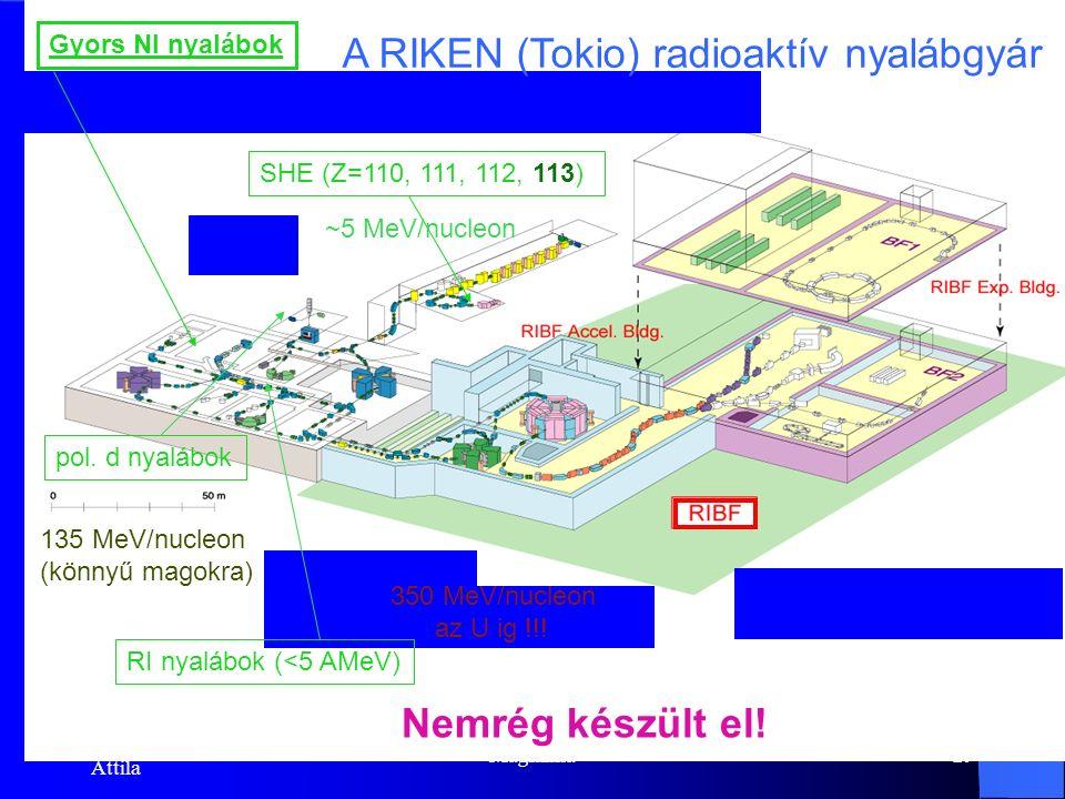 Dr. Krasznahorkay Attila Magfizika28 Az atommagok birodalma Stabil magok Radioaktív bomlás Részecskegyorsítók (p,d, α) Nehézionok (α  U)