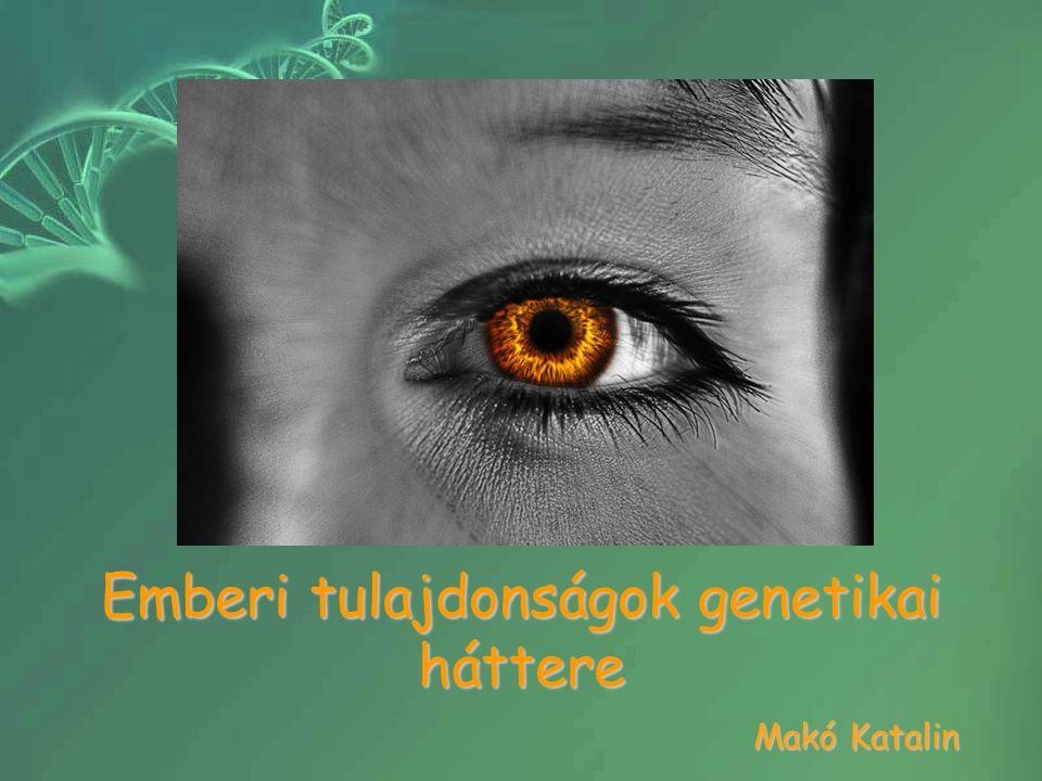 Emberi tulajdonságok genetikai háttere Makó Katalin