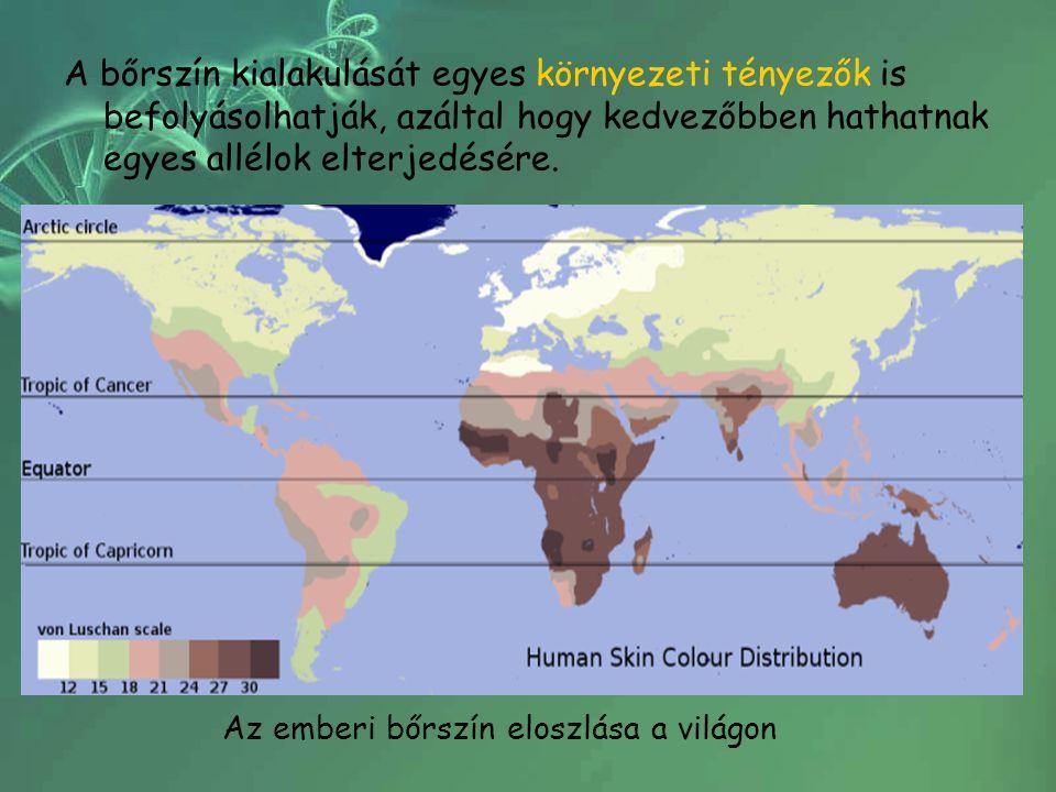A bőrszín kialakulását egyes környezeti tényezők is befolyásolhatják, azáltal hogy kedvezőbben hathatnak egyes allélok elterjedésére. Az emberi bőrszí