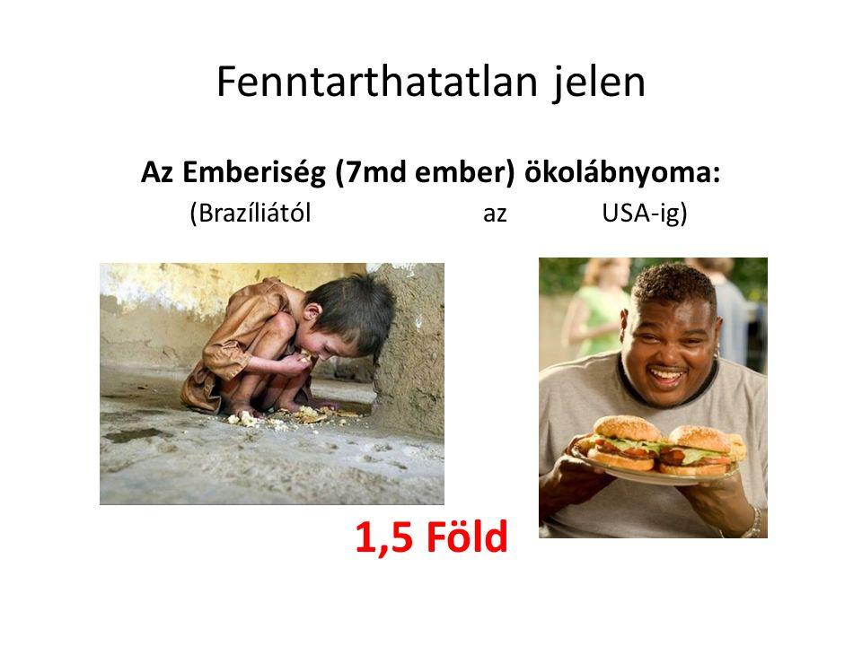 Fenntarthatatlan jelen Az Emberiség (7md ember) ökolábnyoma: (Brazíliátólaz USA-ig) 1,5 Föld